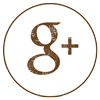 google+Alchimie
